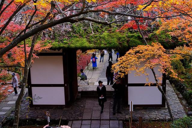 Jojakko-ji Temple, Arashiyama, Kyoto, 2019