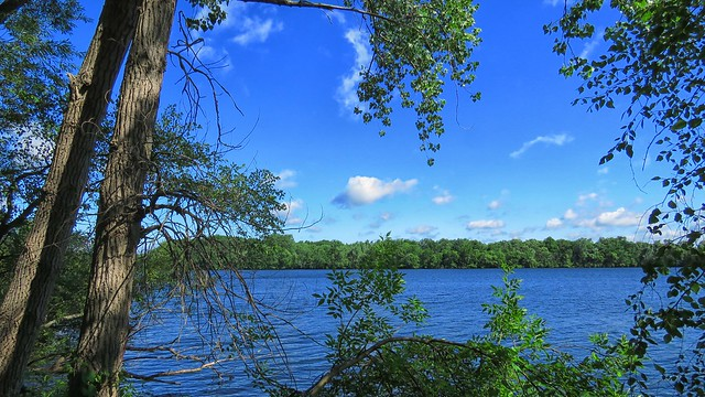 Fresh Pond Reservoir