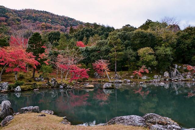Tenryuji Temple, Arashiyama, Kyoto, 2019