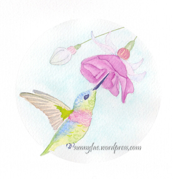 hummingbird and fuchsia with a background