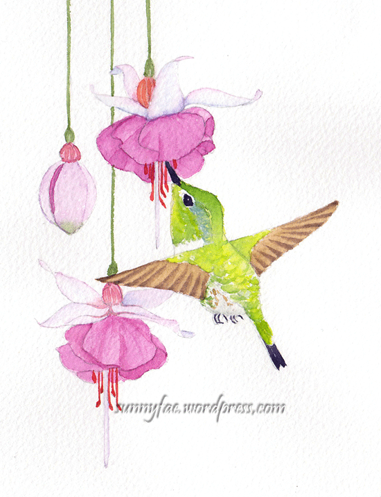 green hummingbird and fuchsia flowers