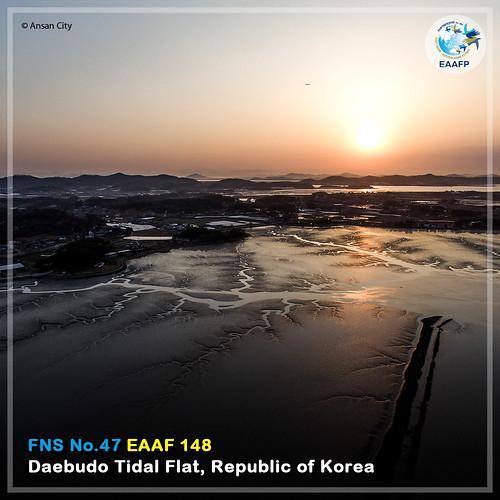 Daebudo Tidal Flat_#FridayNetworkSite Card News