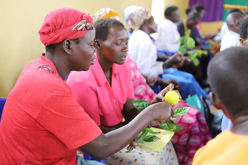 Practical and Theoretical Agricultural Training in Amuria district for Women and men living with HIV/AIDS