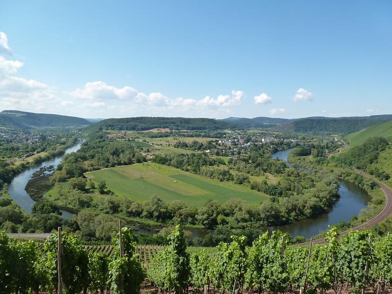 """""""Schönste Weinsicht"""" - Blick auf den Altarm der Saar"""