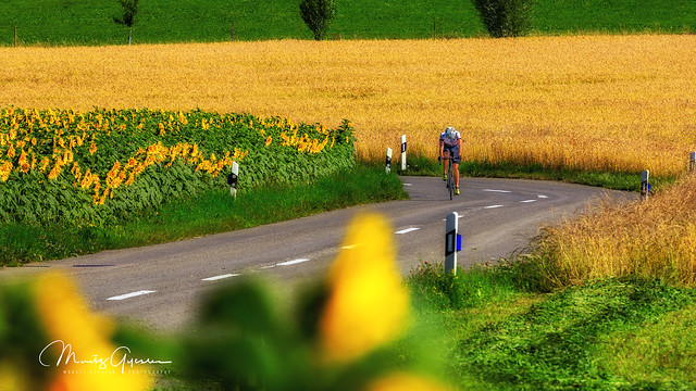 Summer Cycling Ride on the country side