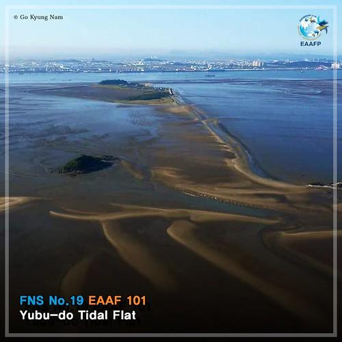 Yubu-do Tidal Flat_#FridayNetworkSite Card News