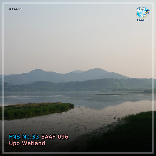 Upo Wetland_#FridayNetworkSite Card News
