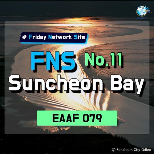 Suncheon Bay_#FridayNetworkSite Card News