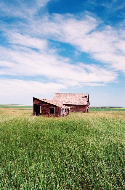 Field Building