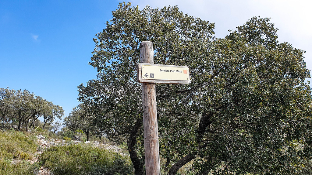 A wooden pole in the middle of the photo with an arrow pointing left on which is written Pico de Mijas together with an orange marking. Behind the pole there are bushy wild olive trees.