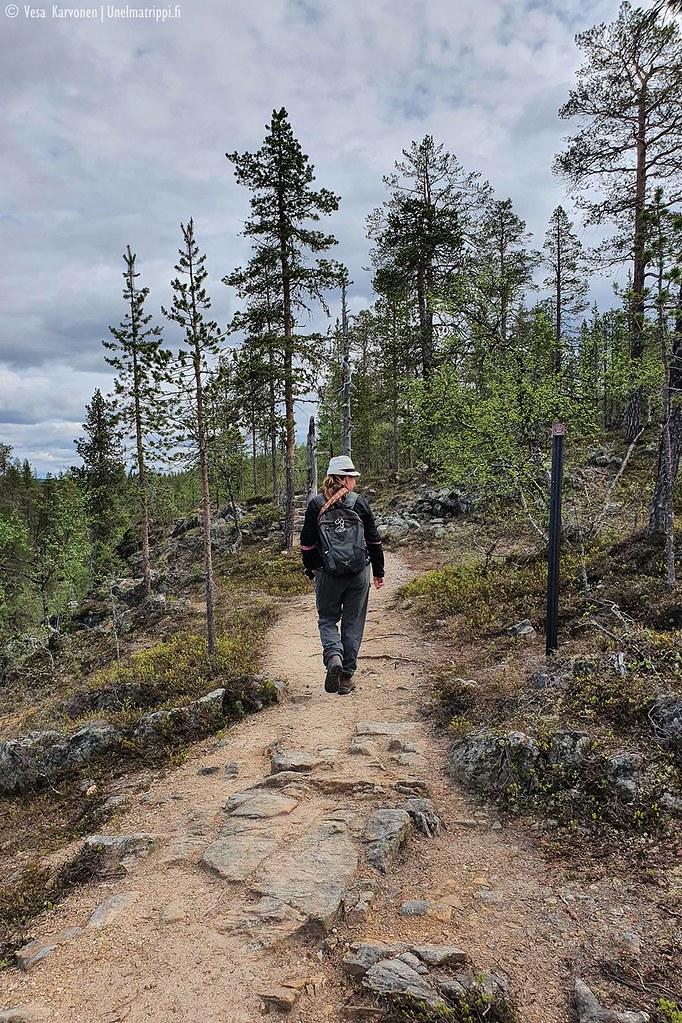 Patikoimassa Urho Kekkosen kansallispuistossa