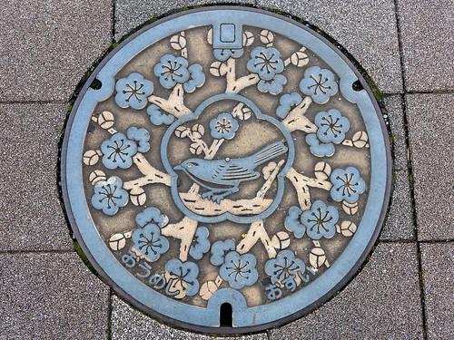 Oume Tokyo, manhole cover (東京都青梅市のマンホール)