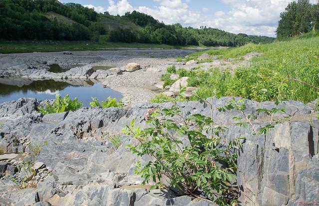 Rivière Chaudière, Saint-Georges, Beauce, PQ, Canada - 4627