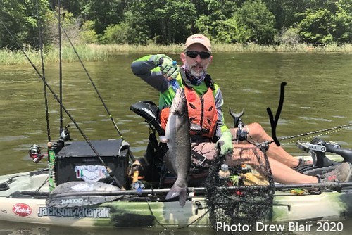 HV Shearon harris Channel Catfish 6 (5) | by henry_veggian@yahoo.com