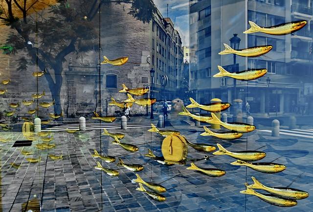Urban underwater life