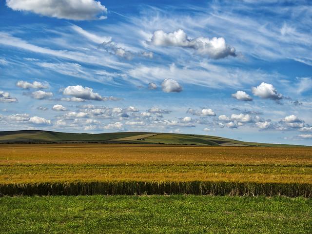 West Kennet Longbarrow - Landscape