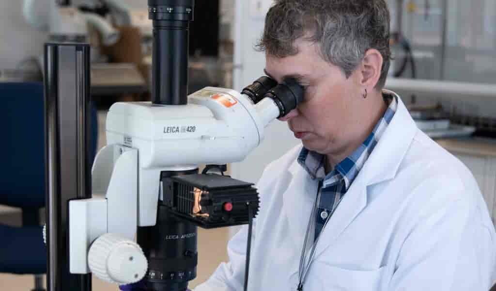 un-organoïde-du-foie-pour-la-recherche-organes-transplantés