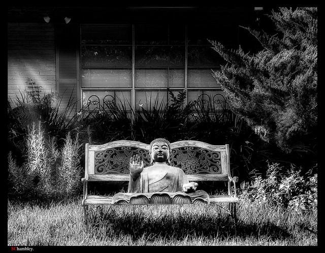 Budda Bench