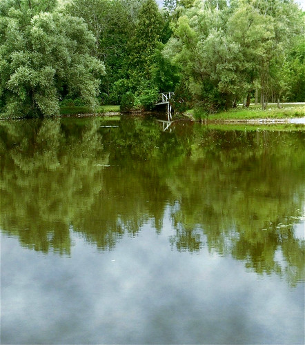 reflections lake water pond summer trees woods path footbridge greenery landscape scene view nature