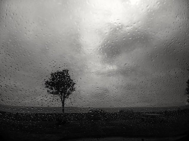 Ragueneau sous la pluie