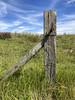 The old gatepost, Barnack Hills + Holes 2020IMG_1406