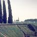 Amphitheater Pompeii Italy March 1972 (1)-2.jpg