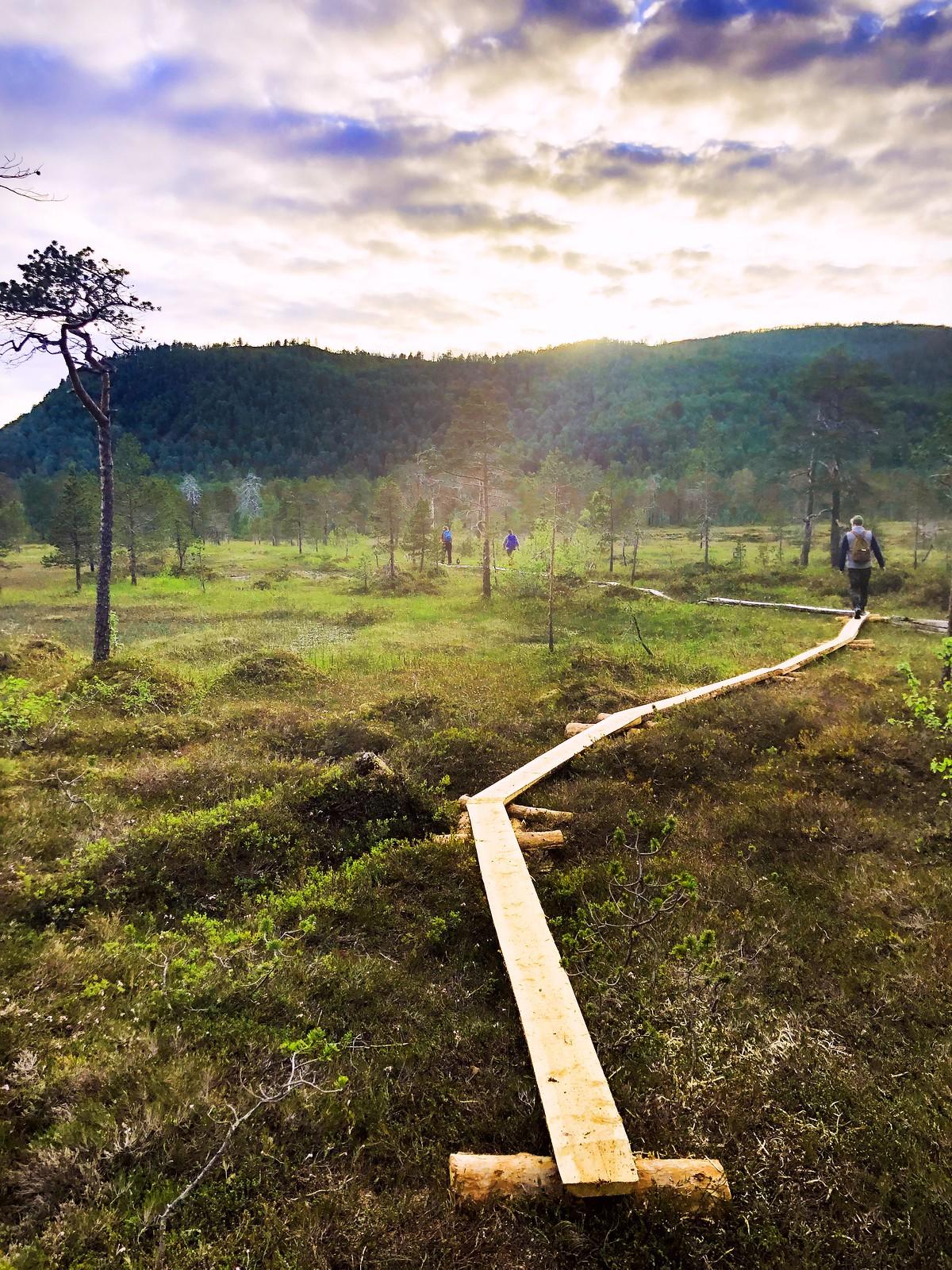 Ånderdalenin kansallispuisto