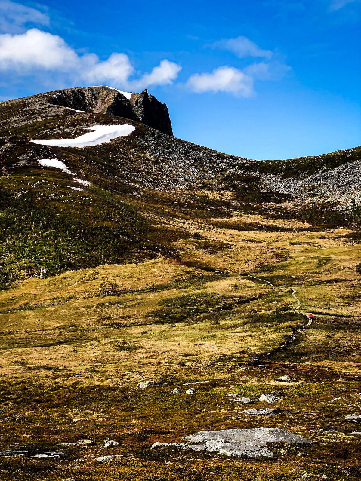 Husfjellet-patikointi-reitti