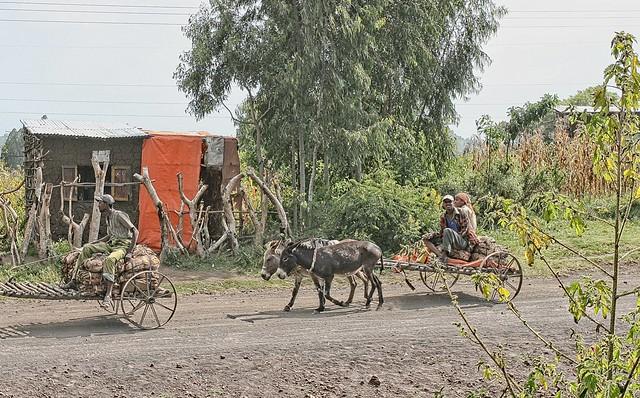 Ethiopia - Tiya - streetview