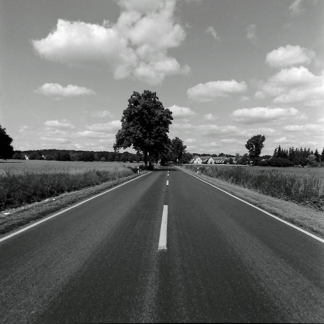Brandenburger Landstraße 13.7.2020