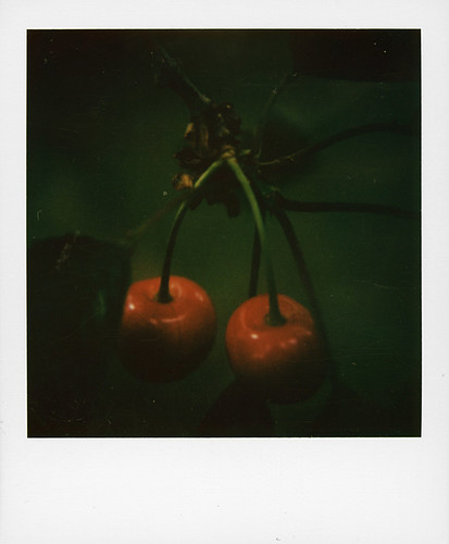 Cherries ... | by @necDOT