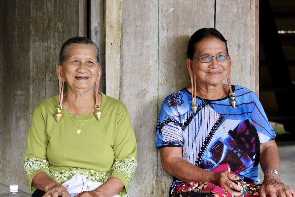photo of matriarchs in Borneo