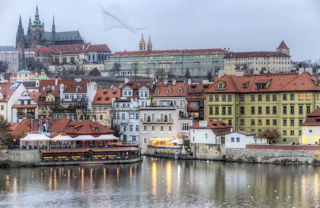Prague Bird Stream