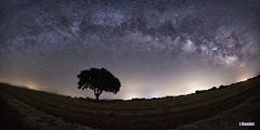 Mirando pasar la galaxia
