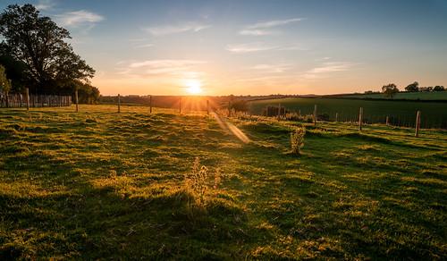 landscape landscapepics explore sunset devon countryside rural field england