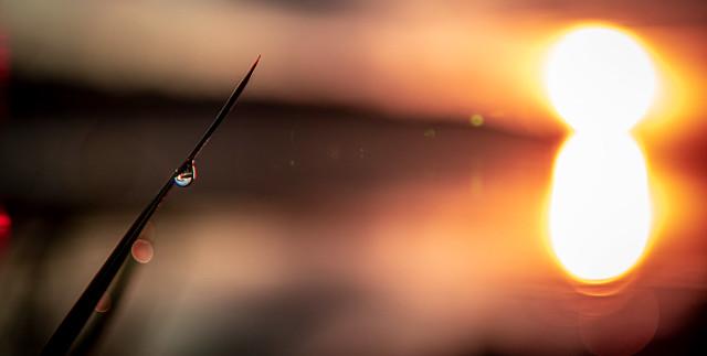 Sunrise, Wassersleben