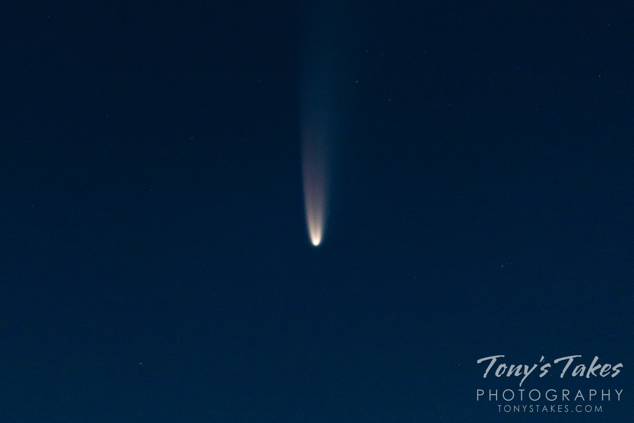 Comet NEOWISE makes an appearance in the early morning sky