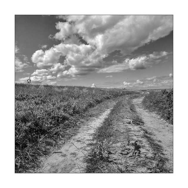 Path and clouds