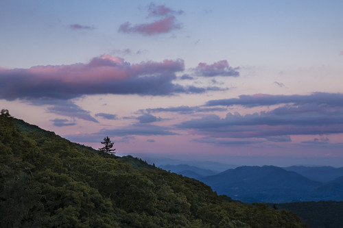blueridge mountains northcarolina wnc pink sky clouds tree forest nationalpark pisgah haywood waynesville vista overlook beauty outdoor nature