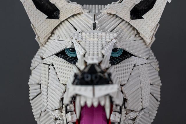 Spirit Wolf: Eyes