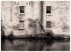 FILM: Canalside