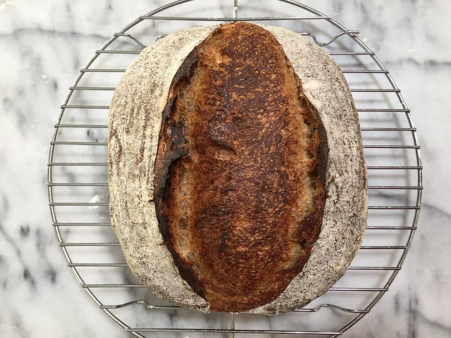 Whole Wheat 25% - Garam Masala