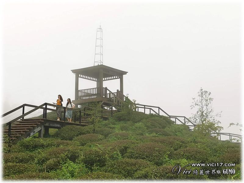 大崙山茶園觀景台094