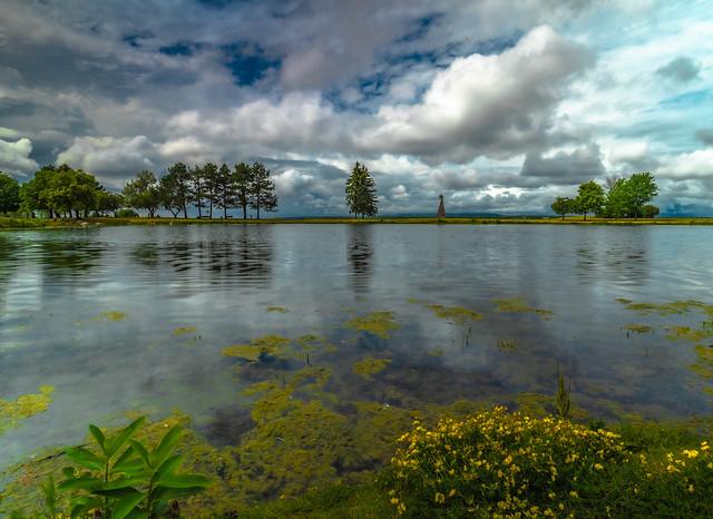 Pond At Andrew Haydon
