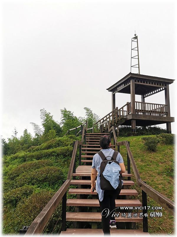 大崙山茶園觀景台087
