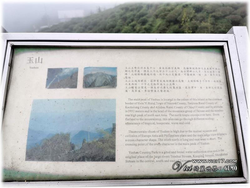 大崙山茶園觀景台083