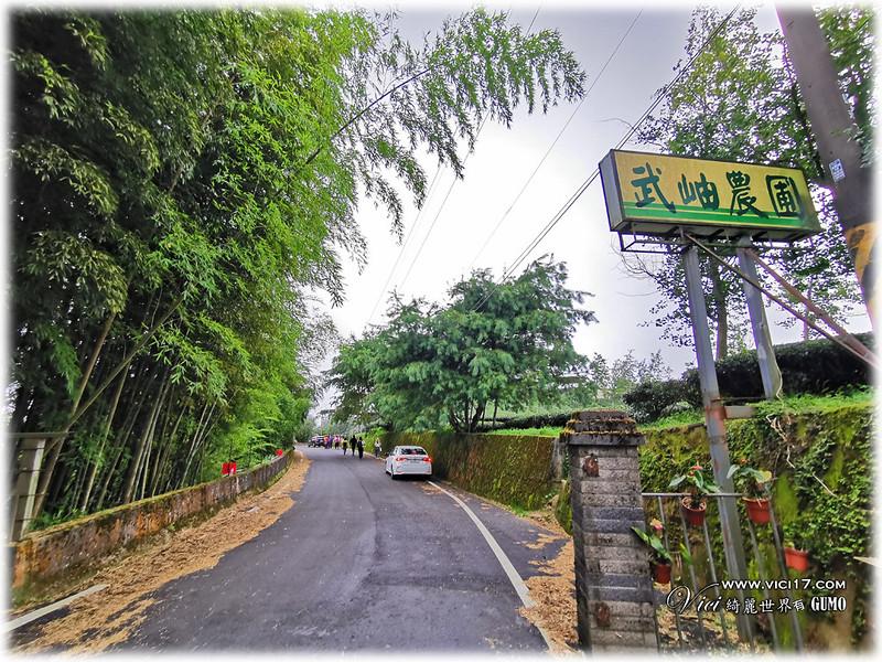 大崙山茶園觀景台023