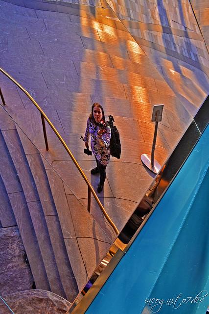 Reflection Selfie on The Vessel Hudson Yards Manhattan New York City NY P00589 DSC_2273