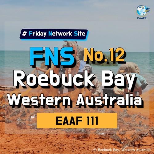EAAF111 (Roebuck Bay) Card News