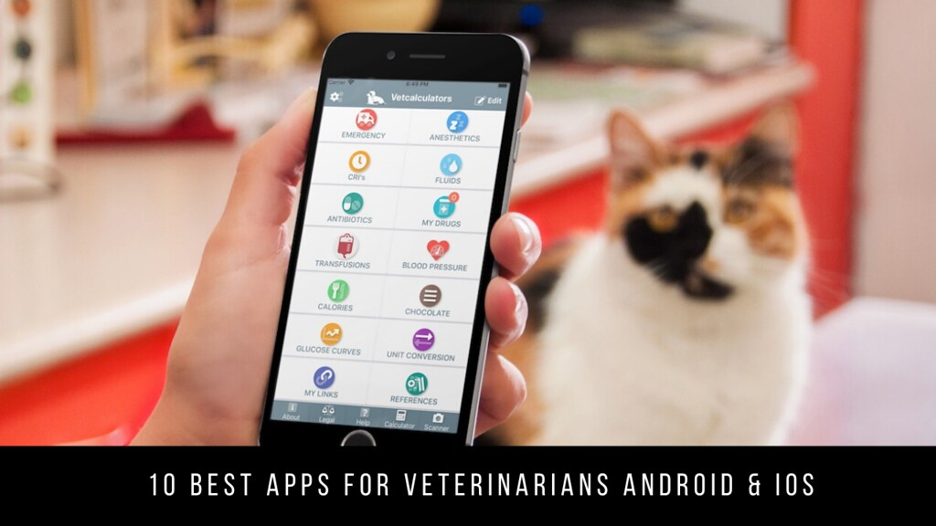 10 Best Apps For Veterinarians Android & iOS
